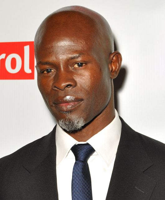 Djimon_Hounsou_(cropped)